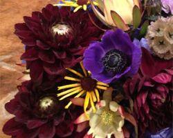 Twelve Flowers