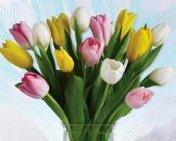 Hillcrest Floral