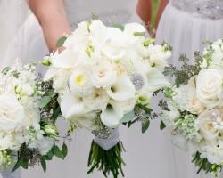 Lipinoga Florists