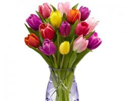 Brennans Flowers