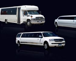 Fab Limousines, Inc.