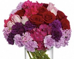 Colorado Springs Florist Inc.