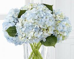Flowers Flowers Etc.
