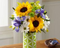 Nonis Flowers