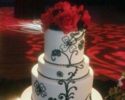 Sauer Cakes