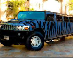 Opex Limousine