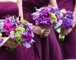 Veldkamp's Flowers