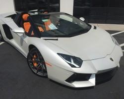 Lamborghini Carolinas