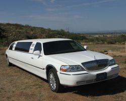 L & M Limousine LLC