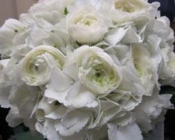 TCU Florist