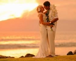 Together Forever Wedding Officiants
