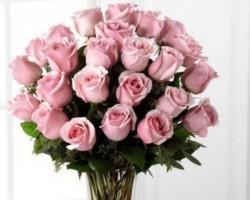 Kremp Florists