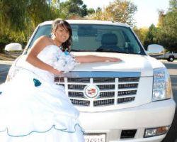 HS Limousine
