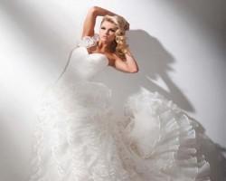 Brides Rejoice