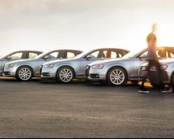 Silver Car Rentals