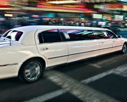 Miss Limousine