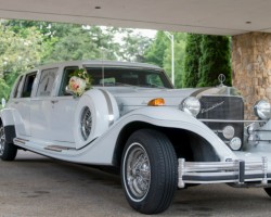 Roaring 20s Limo