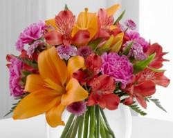 Garzas Floral