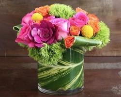 VIDA Floral
