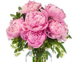 Feldis Florist