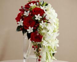 Floreria Perlita