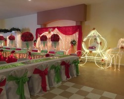 Dianes Bridal and Quinceanera