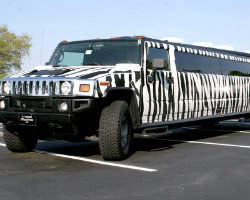 A1 Luxury Limo