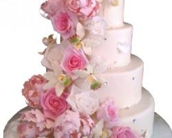 Carmen Rosas Bakery