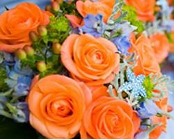 Petal Beach Floral Studio