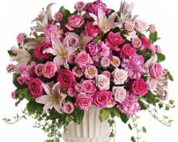 Flowers by Janice