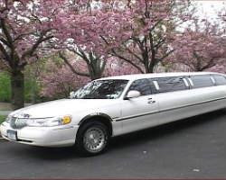 U.S. Limousine Service