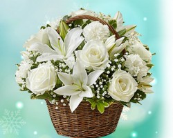 Evelyns Flowers