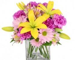 Jam Flowers OKC