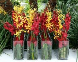 Flourish Floral Productions Inc.