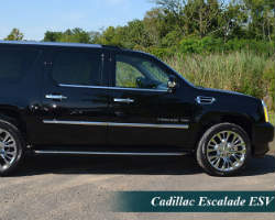Sterling Limousine Service
