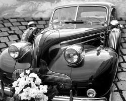 Vintage Limousines