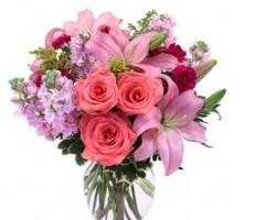 Serrano Flowers