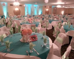 All Occasion Banquet Center
