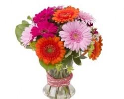Soderberg Floral & Gift