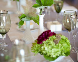 Mandy Scott Events