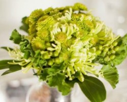 Embellish Floral