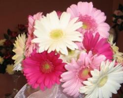 Blossom Designs Floral Boutique