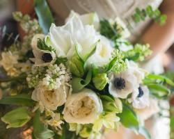 Lia Colapietro Floral