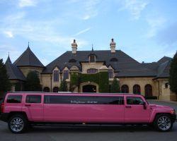 Pink Pony Limousine Service LLC