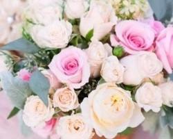 Roost Flowers